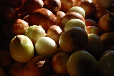 Cebolas | Onions