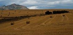 Província do Cabo Ocidental | Western Cape Province