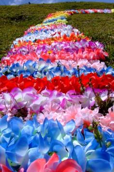 O Caminhos das Flores